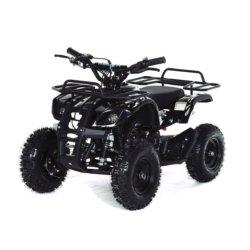Квадроцикл детский бензиновый MOTAX ATV Х-16 Мини-Гризли с электростартером и пультом черный (пульт, задний привод, до 45 км/ч)
